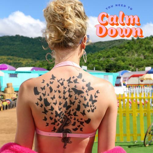 متن ترجمه شده آهنگ You Need To Calm Down از Taylor Swift